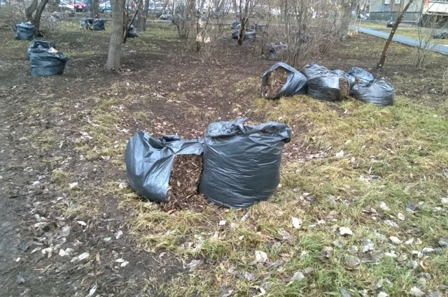 Жителя Чойского района отправили вколонию занежелание убирать сор