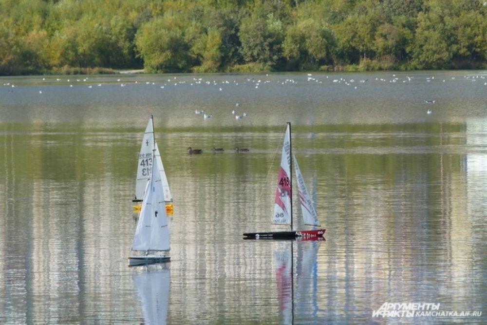 На Култучном озере прошли соревнования по парусному спорту.