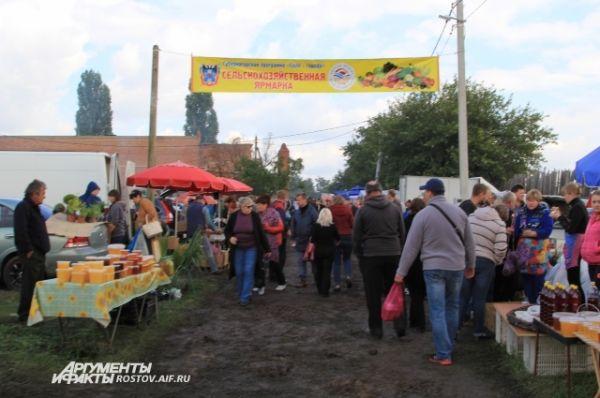 Несмотря на сырую погоду, в Пухляковский приехало почти 12 тыс. любителей винограда и вина, в том числе из других регионов России.