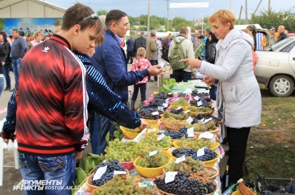Осенняя ярмарка сельхозпродукции, вин и напитков.