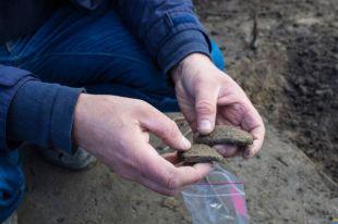 На раскопках под Калининградом археологи нашли вещи III-II веков до н.э.