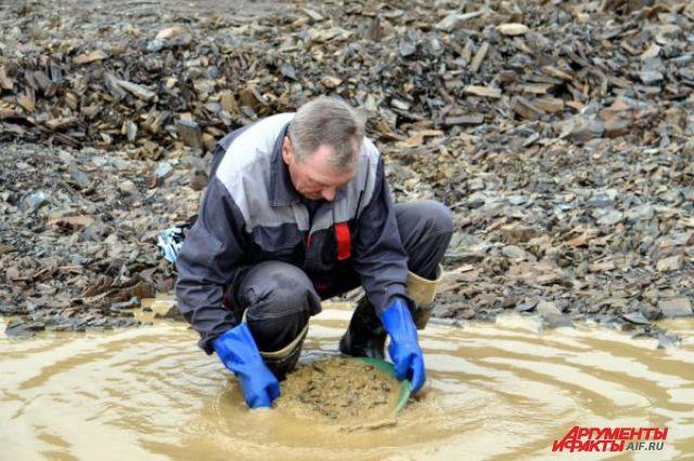 Речные долины, где добывают золото, регулярно загрязняются.