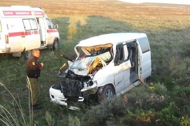 Автомобиль врезался в лошадь и улетел в кювет.