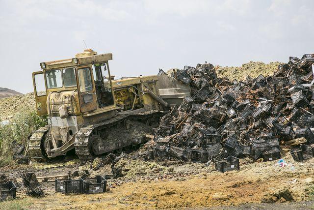 НаДону уничтожили восемь тонн санкционных фруктов для «Перекрестка»