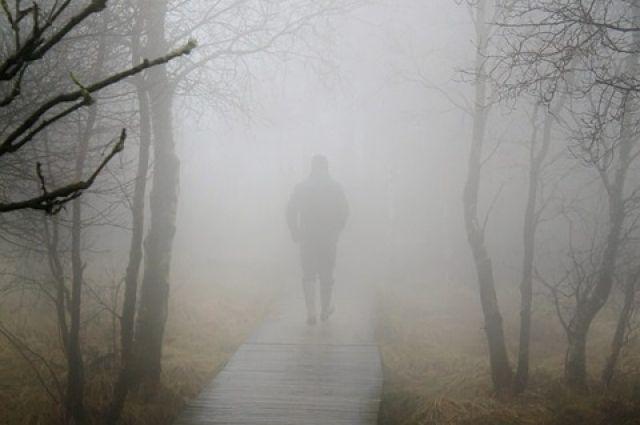 Из-за утреннего тумана видимость на дорогах резко снижается