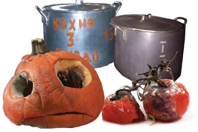 Старые продукты и грязные кухни - вот и болеют школьники.