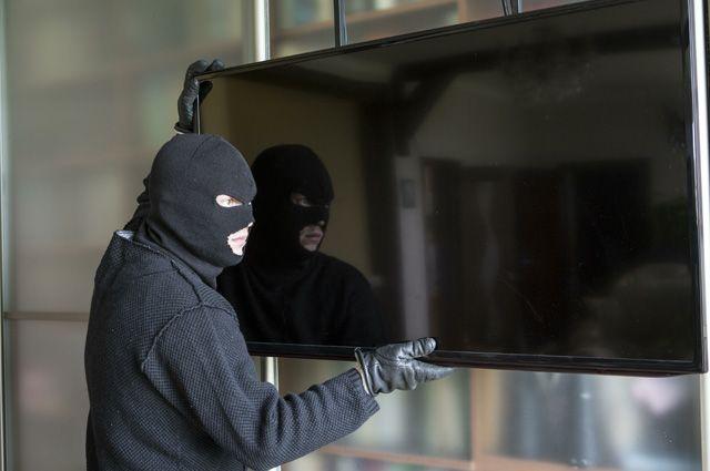 ВПетербурге трое молодых людей заполгода совершили дюжину краж