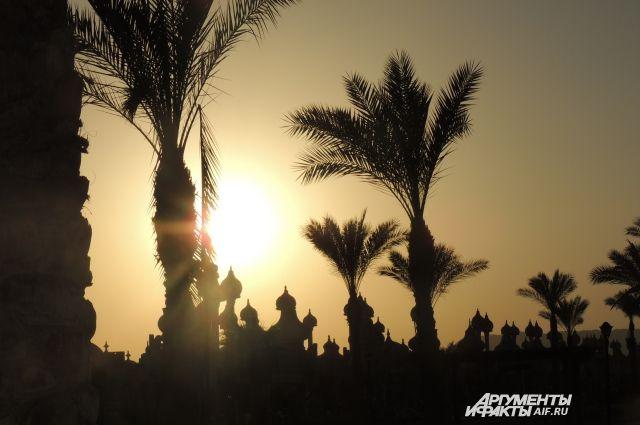 Житель Светлого засудил турфирму после отмены поездки в Египет.