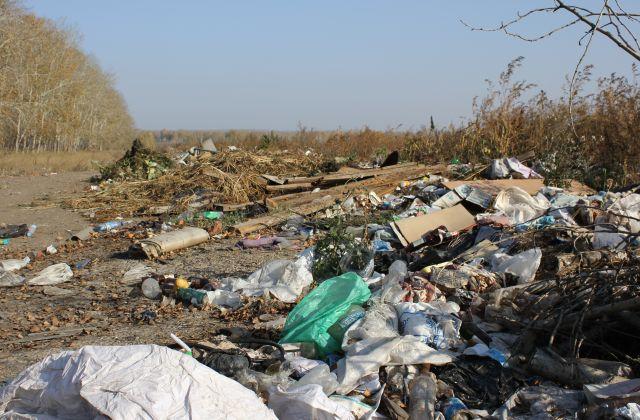 Несанкционированные свалки чаще всего появляются вблизи населенных пунктов.
