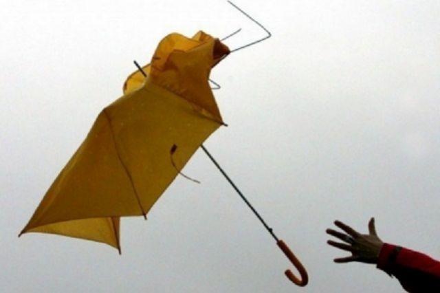 МЧС предупредило о стремительном ухудшении погоды в столице