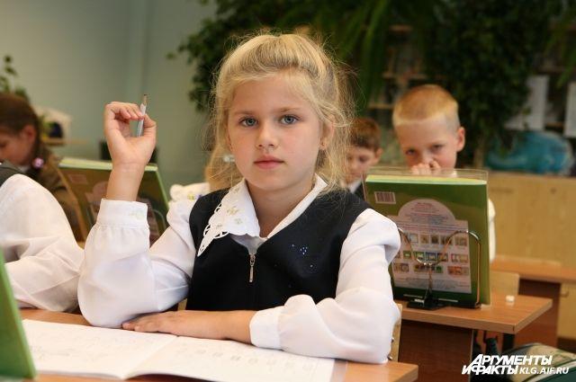 Детей нужно учить думать, а не натаскивать на тесты.
