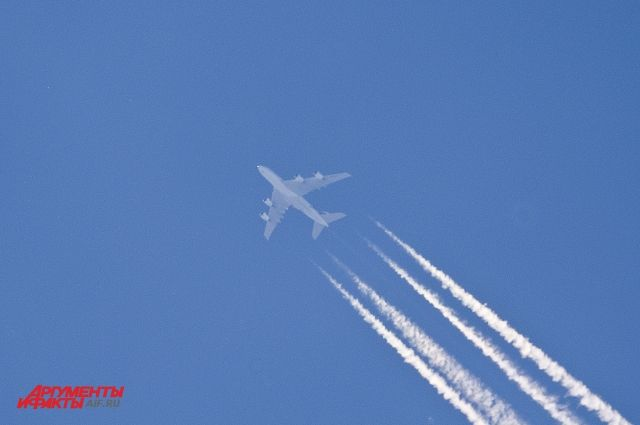 ВСамаре был схвачен рейс «Самара-Ираклион» из-за плоскогубцев