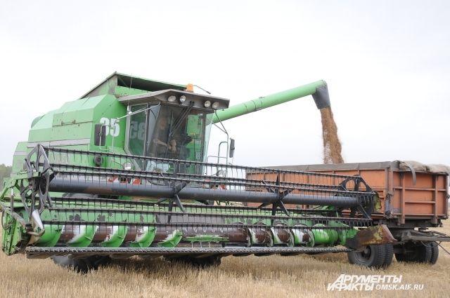 В этом году зерна собрали больше.