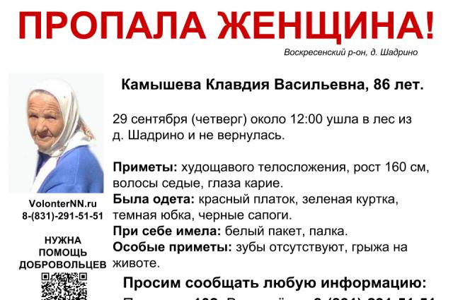 Пожилая нижегородка бесследно исчезла влесах Нижегородской области