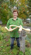 Эта тыква выросла у садовода Арамелевой Зои Павловны, СНТ «Надежда», пос. Кукуштан