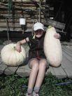 Вот такое чудо нашли на огороде у бабушки в поселке Кусье-Александровский.