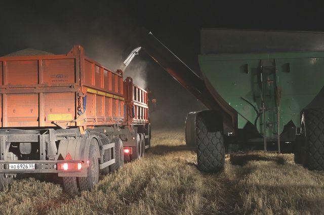Крутинские аграрии вОмском регионе стали лидерами вуборке урожая