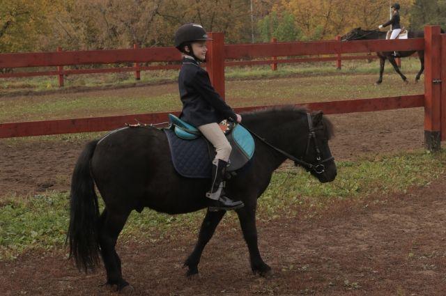 Условия конно-спортивного клуба в парке позволяют выполнять спортивные разряды