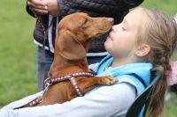 Новый стадион владельцы собак смогут опробовать уже на предстоящих выходных.