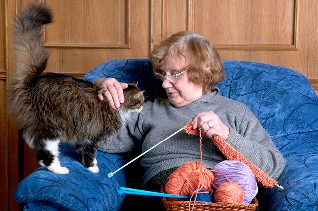 Человек и кошка. Какие болезни лечат усатые «доктора»
