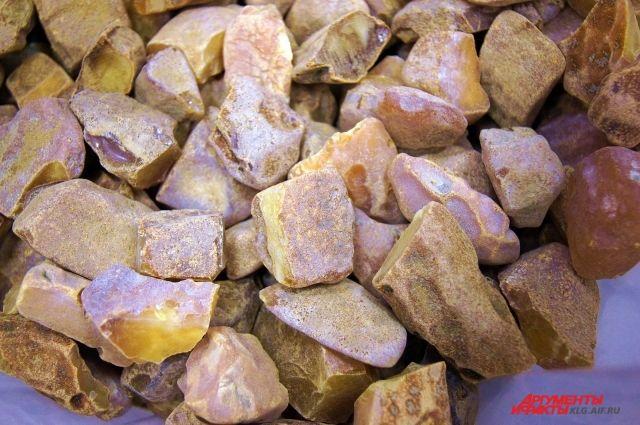 В Госдуму внесен законопроект об уголовной ответственности за добычу янтаря.