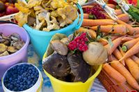 90% овощей и фруктов попадает на торговые прилавки с частных огородов.