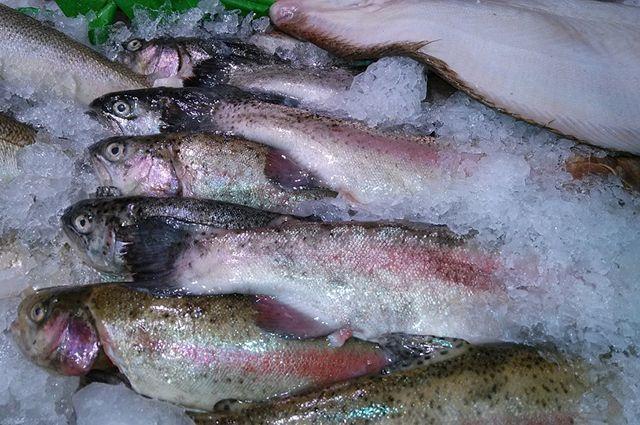 Омичи съедают почти по 19 кг рыбы в год.