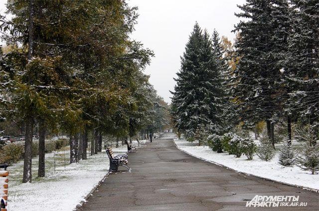 В регионе продолжается установление снежного покрова.