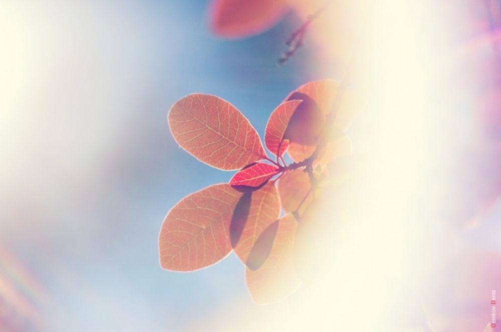 Октябрьские дни дарят невероятные краски и ощущения.