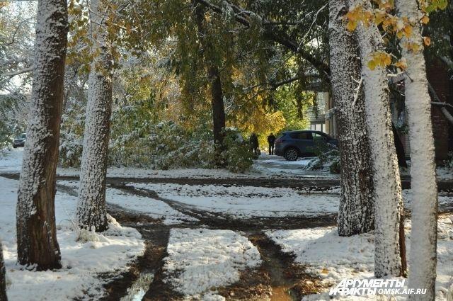 Выпавший снег долго не пролежит.