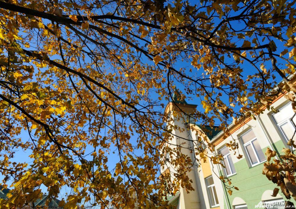 Осенняя листва.