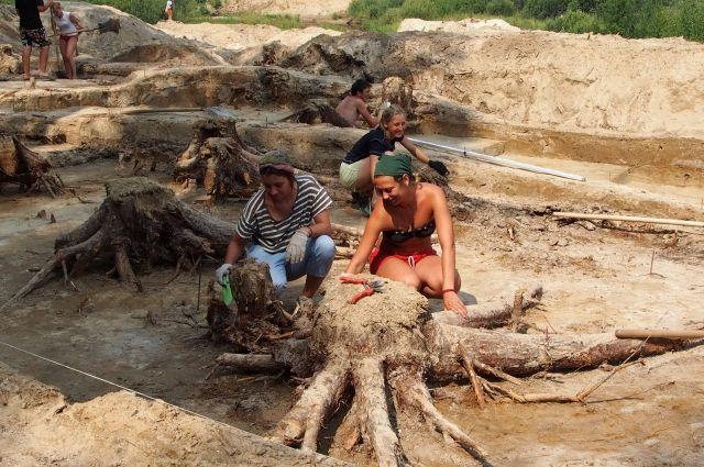 Археологи проводили раскопки на территории площадью 1800 кв. метров.