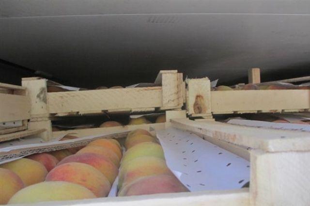 ВКрасноярске нарынке сожгли 35кг персиков