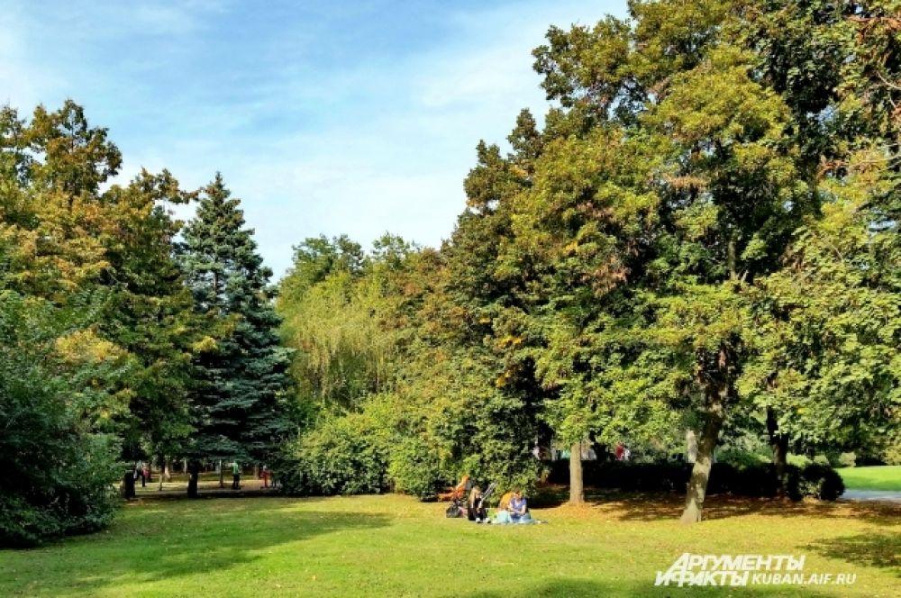 В Чистяковской роще многие горожане любят сидеть на траве.