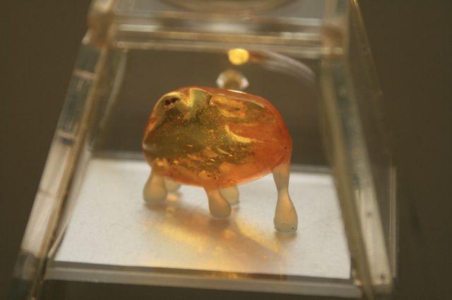 Каждый кусочек янтаря заключен в специальную стеклянную пирамидку.
