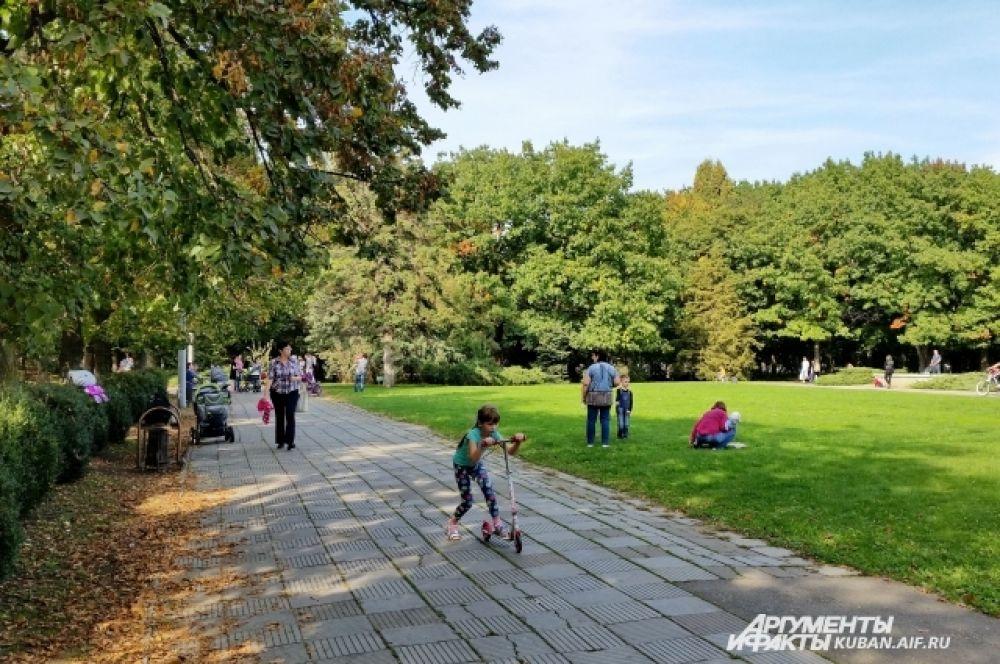 Роща - излюбленное место катания для владельцев самокатов, велосипедов, скейтов и роликов.