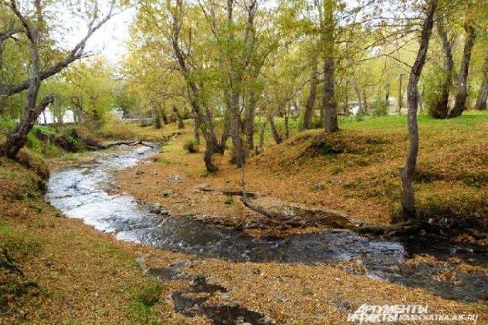 Жители Петропавловска-Камчатского отправляются на природу, чтобы насладиться осенними пейзажами.