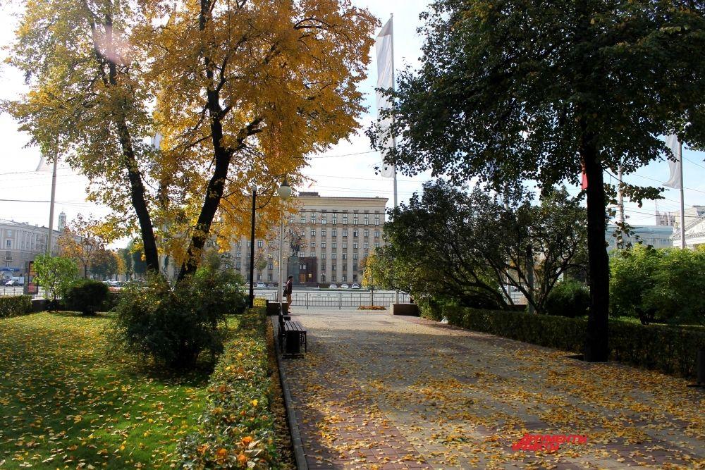 Осень превратила Воронеж в сказочное место.