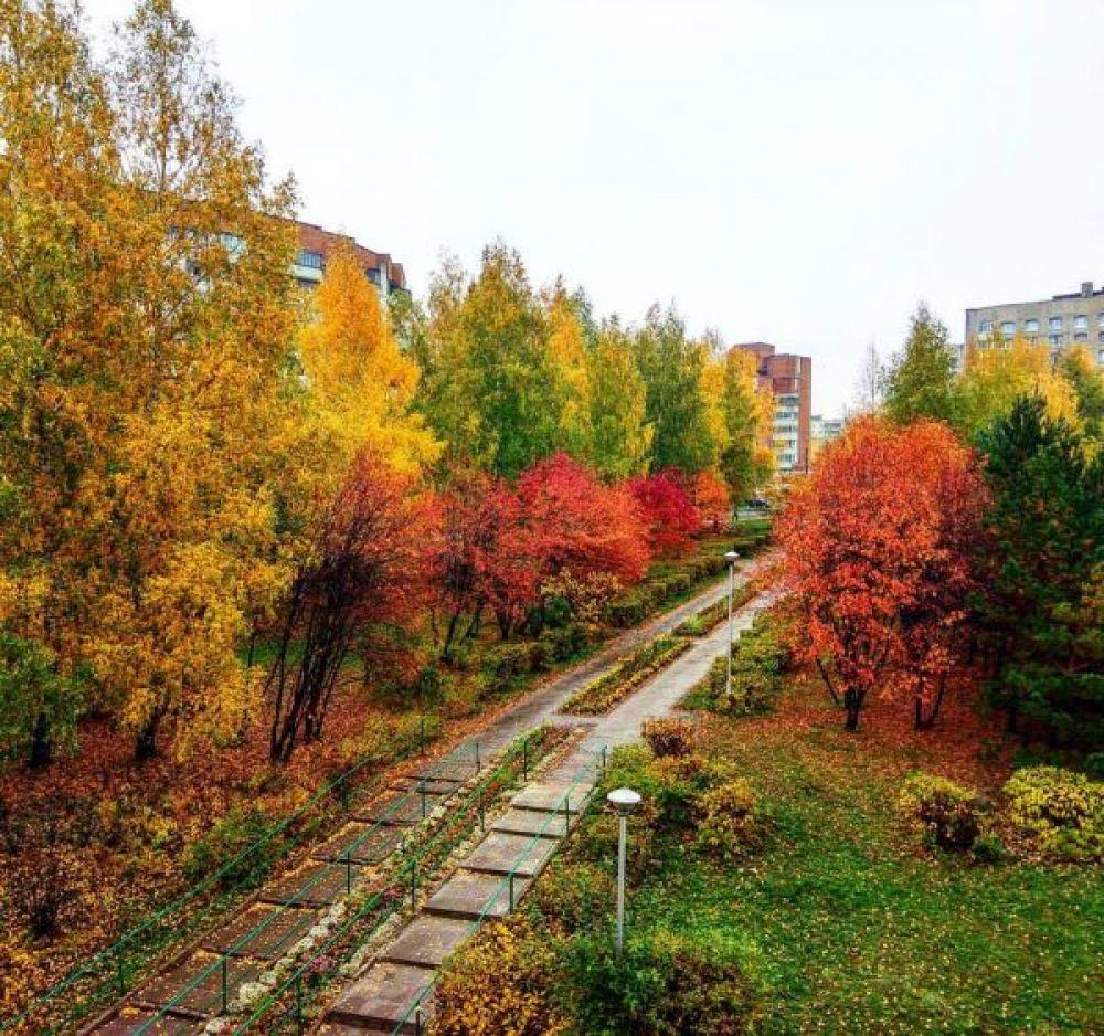 Чебоксарцам эта осень «подарила» и холодные ветра, и яркое, ещё тёплое солнце, первые заморозки и серые дождливые дни.