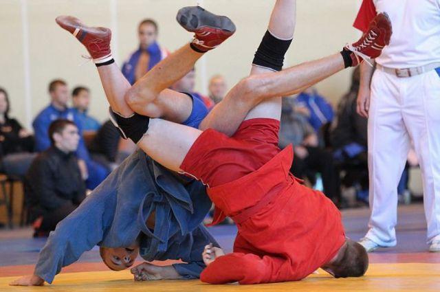Путин призвал сделать всё возможное для принятия самбо олимпийским видом спорта