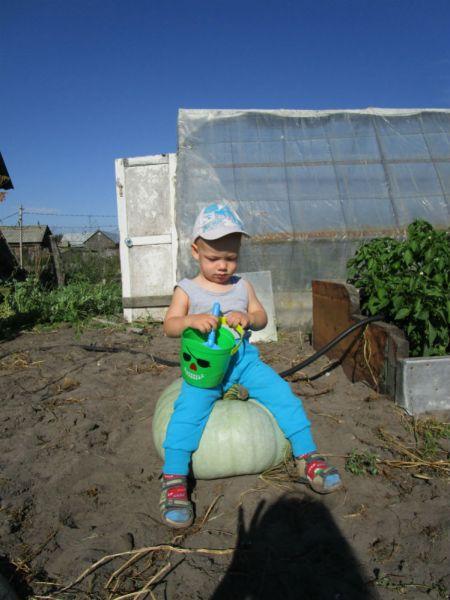 Участник №8. Елена и Николай Некрасовы