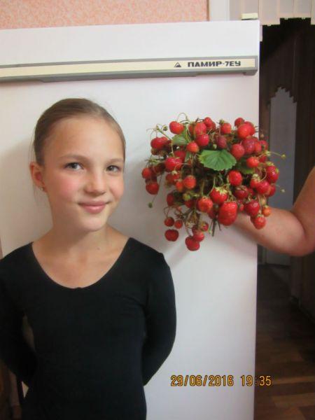 Участник №21. Елена Расторгуева