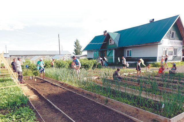 Через школу фермеров прошло 1,5 тыс. сирот.