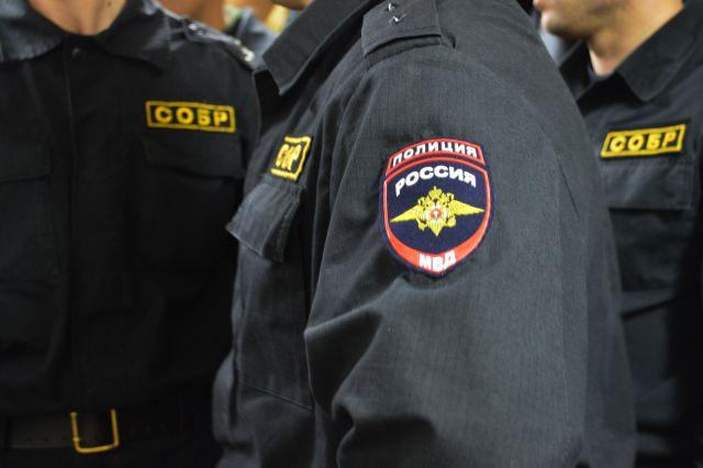 Полиция Москвы проверяет информацию о нападении на дочь Федора Емельяненко