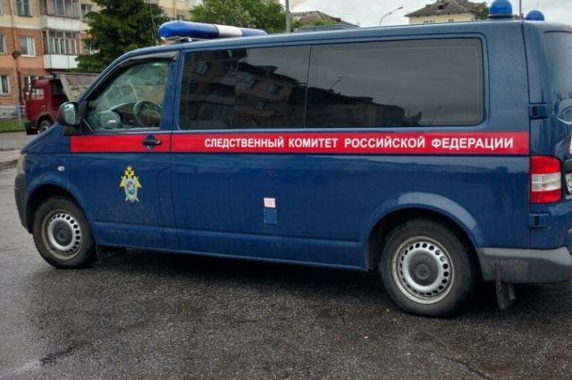 Наулице вМяснове найден труп 77-летней женщины