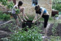 Возмещение полагается товариществам, входящим в Союз садоводов России.