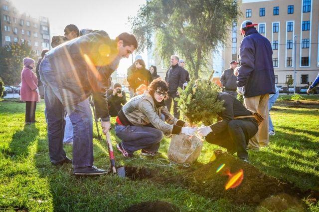 ВРостове вДень древонасаждения появились 17 тыс. деревьев