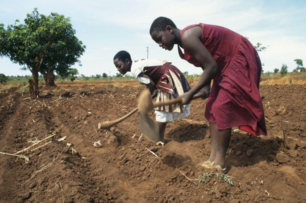 Малави. ВВП на душу населения — $1126