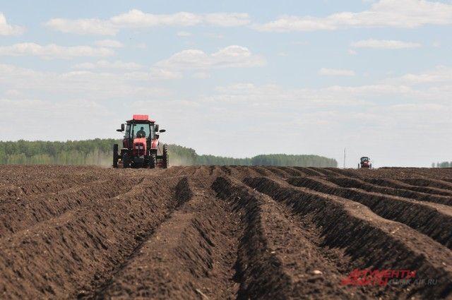 «Сибирская агропромышленная неделя» будет проходить в областном Экспоцентре.