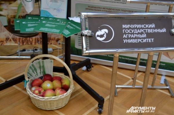 Мичуринский удивил яствами: каждый сельсовет, помимо множества угощений, привез свои фирменные яблоки